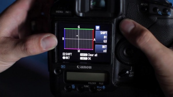 Color correct and grade right in your camera using your white balance, color shift and picture style settings