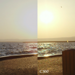 scarlet vs C300