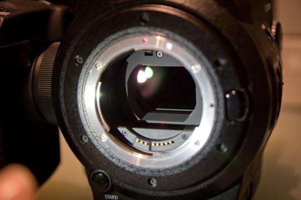 C300 Aliased Fringe – Not so Awesome?