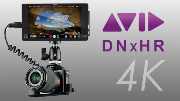 Atomos Shogun and Avid DNxHR LB vs HQX with Sony A7s 4K